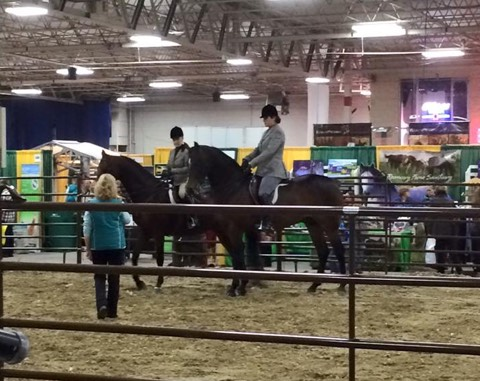 Chris with students at Equine Affaire Clinic