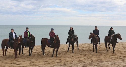 Chrislar Riders at MSPCA Horses Helping Horses Beach Ride