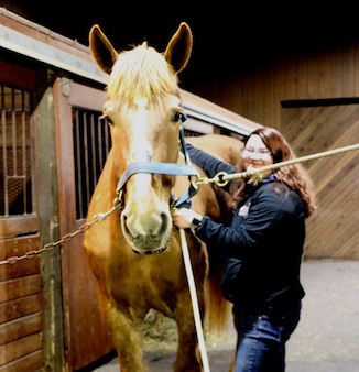 Erin Simard of  Simard's Equine & K9 Therapy providing a treatment to a horse