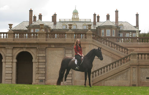 Morgan mare UVM Hightide at with Cranes Castle in the background at the photo shoot