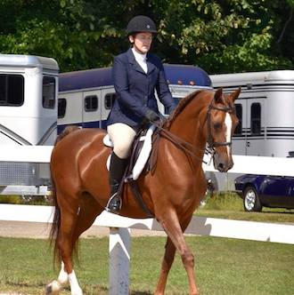 Patti in the show ring with her Morgan horse Lucy