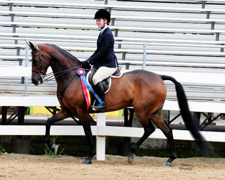 Chrislar student and horse leasor in the show ring