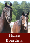 horse boarding - click for info