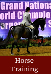 horse training - click for info