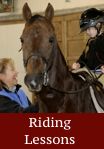 riding lessons - click for info