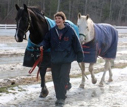 riding instructor Lynn Pomerleau leading two horses in from turnout